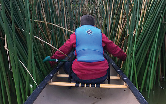 exploring the cat tails by canoe