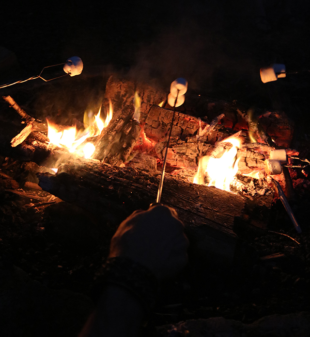 campfire with people toasting marshmallows