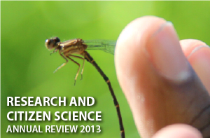 cit sci annual review