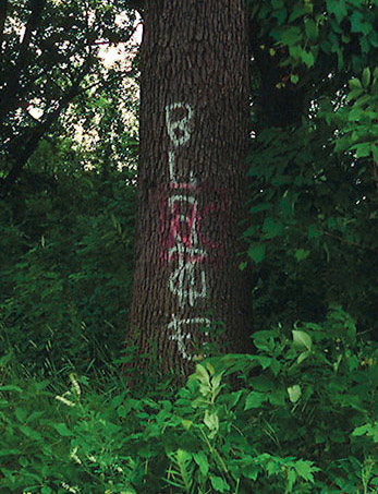 Graffiti written on a tree in Riverside Park