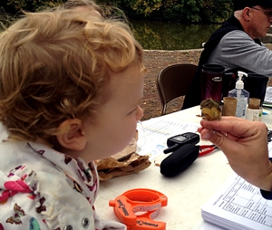 Two year-old Lilli Morby gets an up-close look at a bird