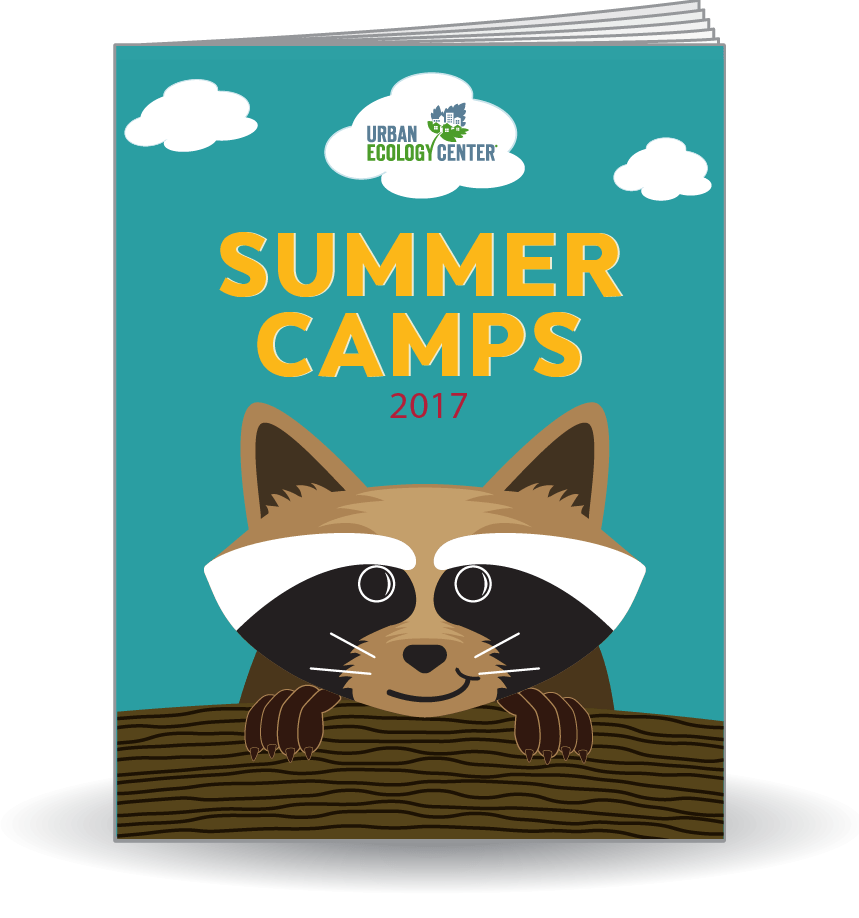 Link to Summer Camp 2016 Guide