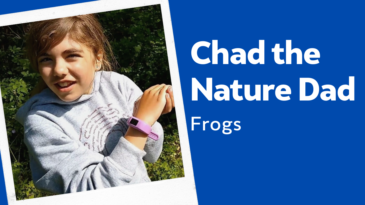 Chad the Nature Dad: Frogs