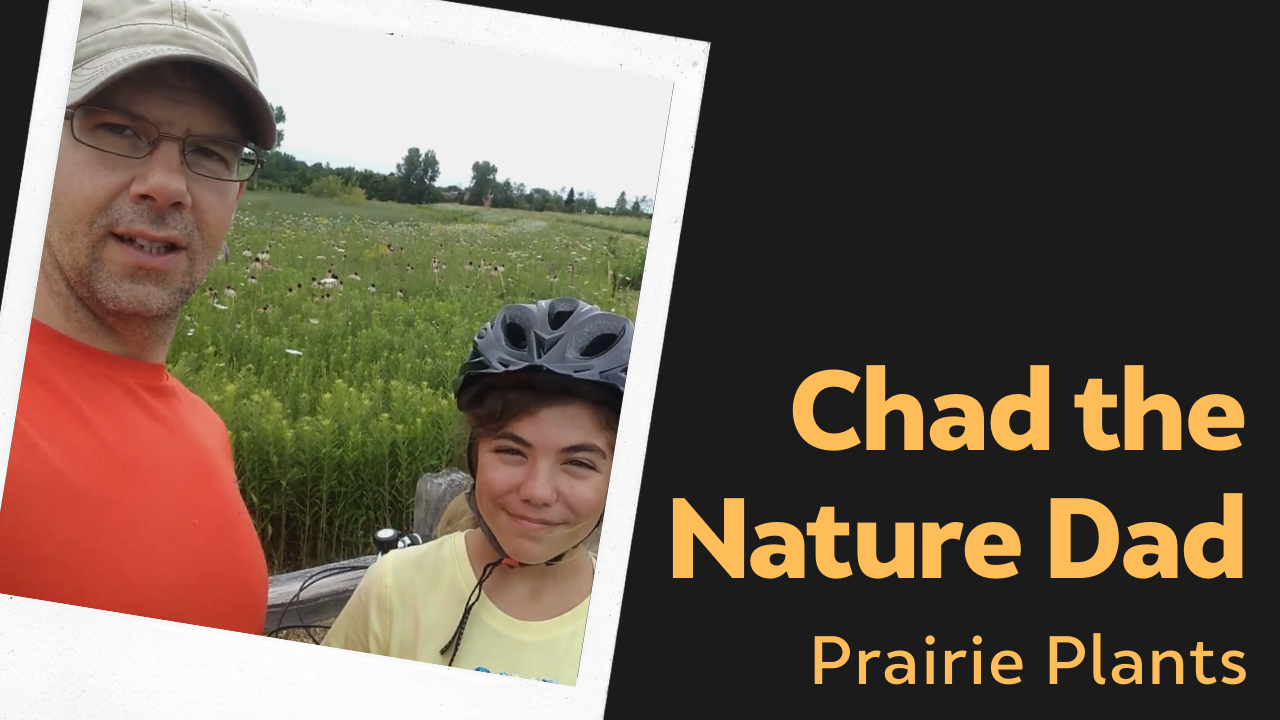 Chad the Nature Dad: Prairie Plants