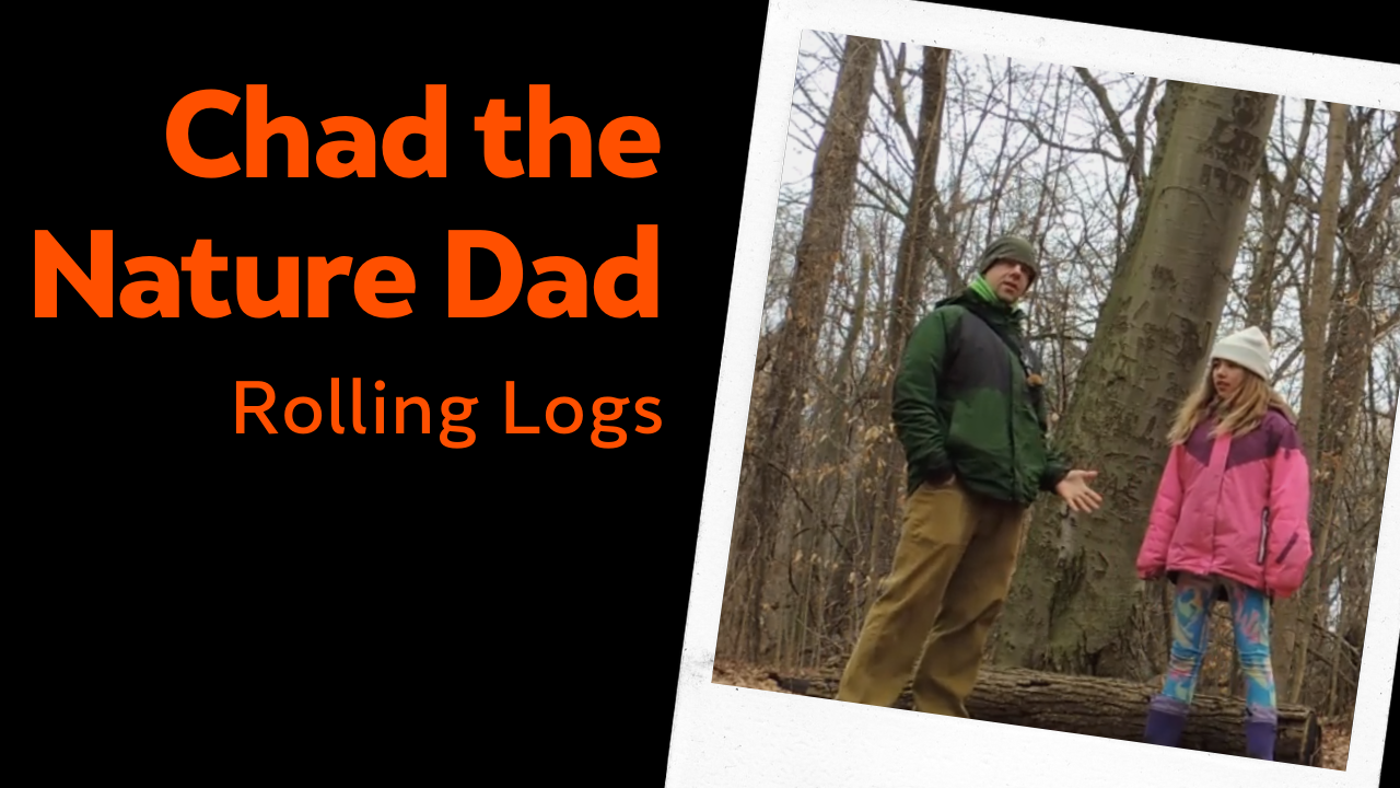 Chad the Nature Dad: Rolling Logs