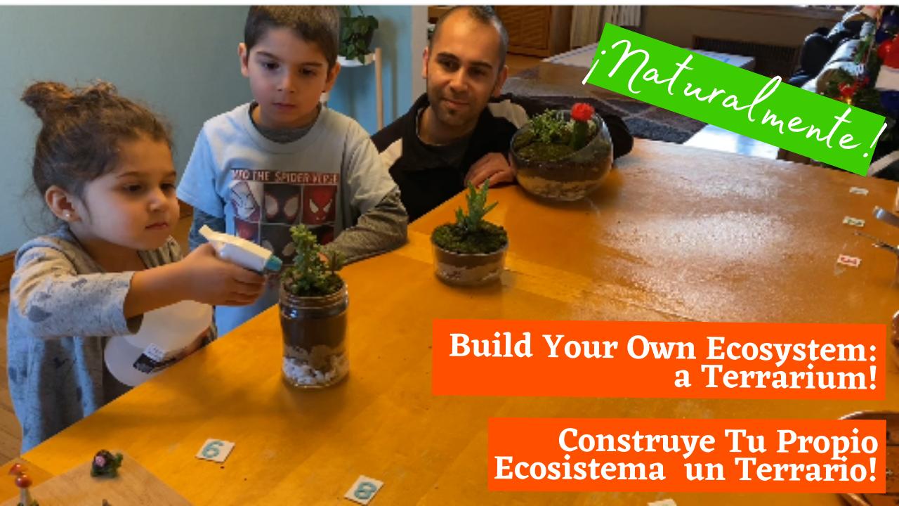 Construye Tu Propio Ecosistema  un Terrario! (Build Your Own Ecosystem: a Terrarium!)