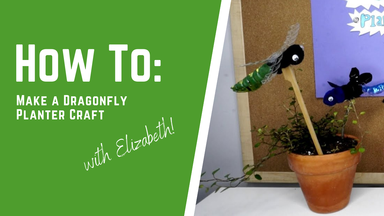 How to Make a Dragonfly Planter Craft