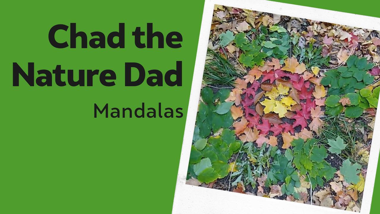Chad the Nature Dad: Mandalas