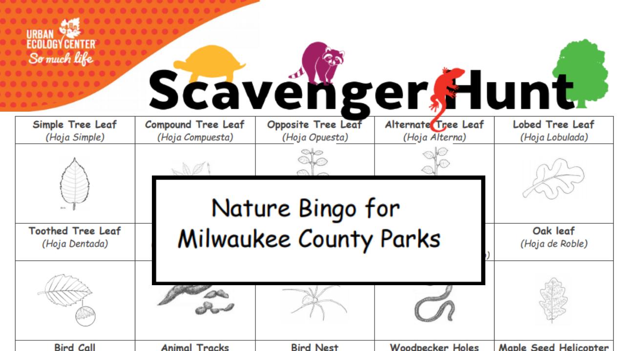 Nature Bingo for Milwaukee County Parks