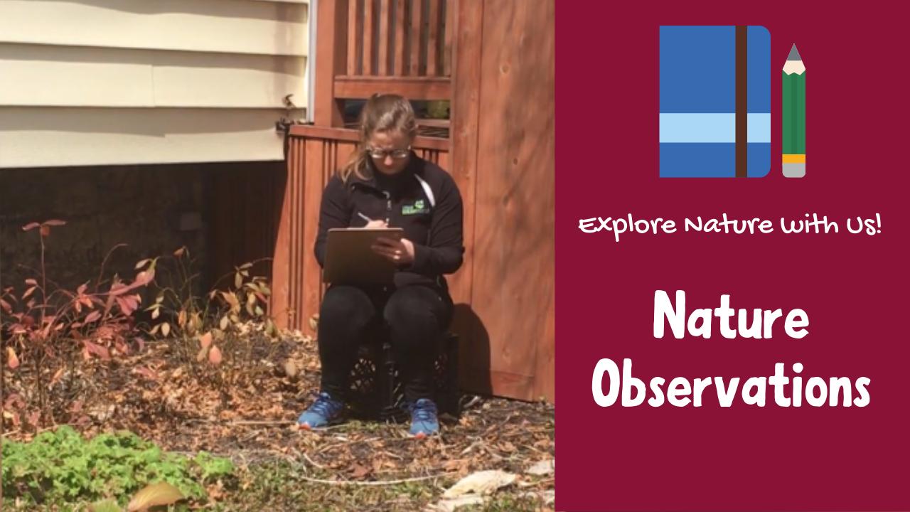 Nature Observations
