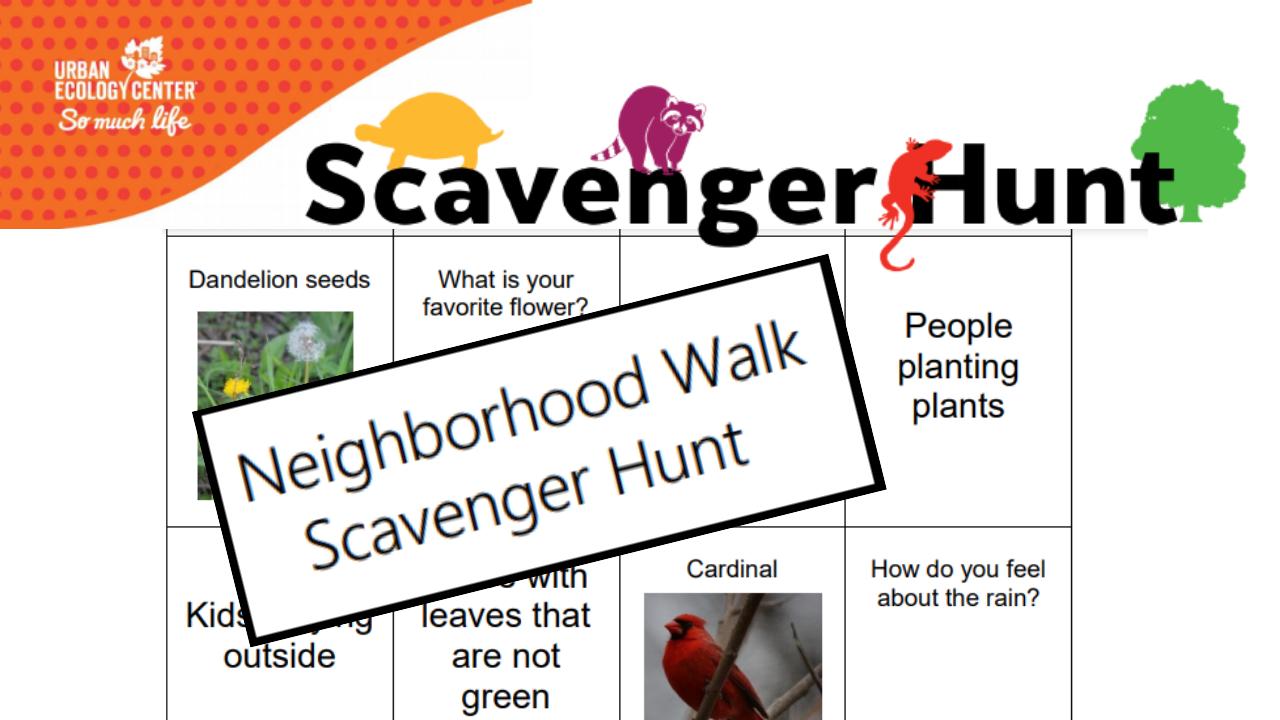 Scavenger Hunt: Neighborhood Walk