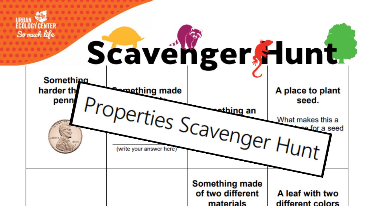 Properties Scavenger Hunt