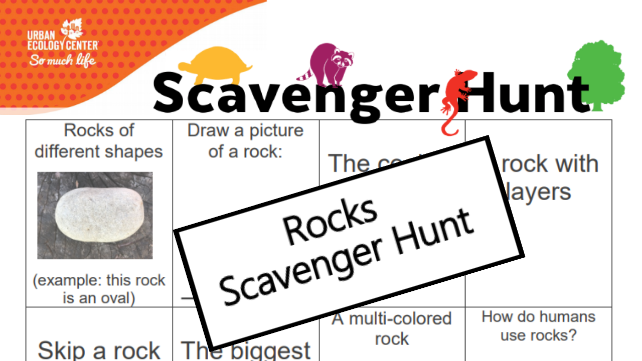 Rocks Scavenger Hunt
