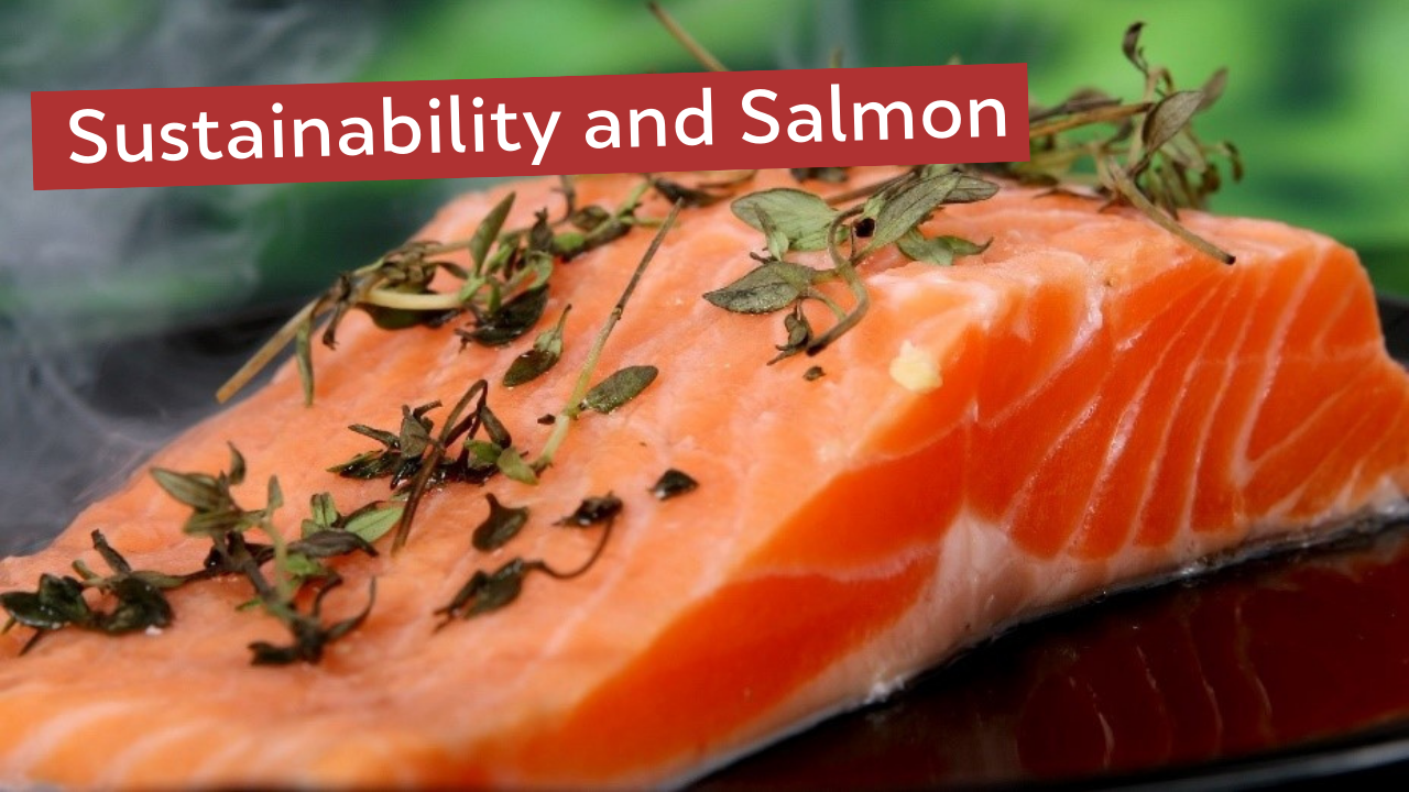 Sustainability and Salmon