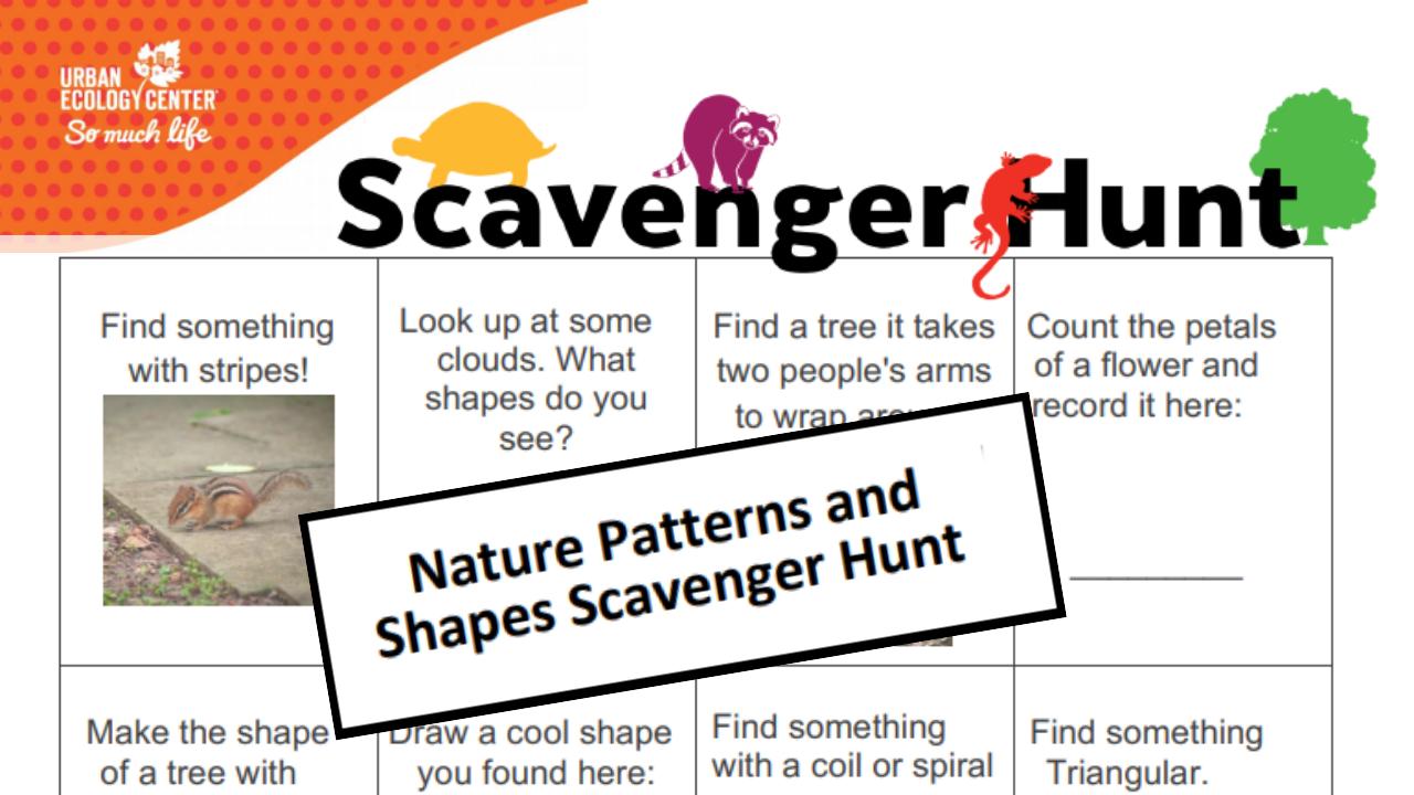 Patterns and Shapes Scavenger Hunt