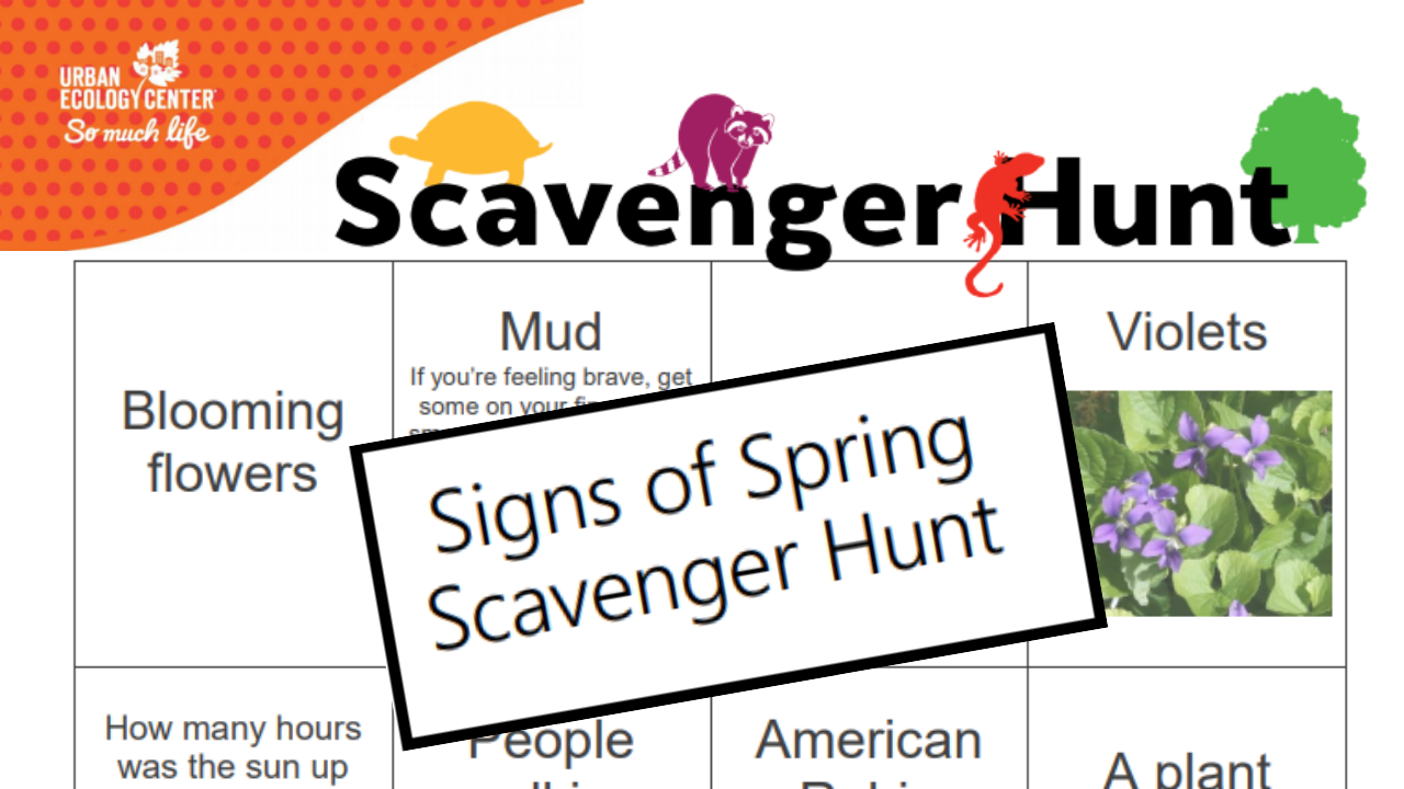 Signs of Spring Scavenger Hunt