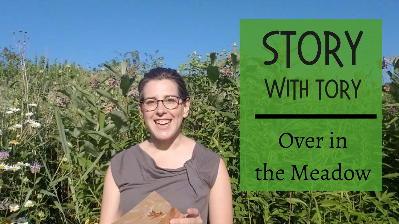 Story with Tory: Over in the Meadow