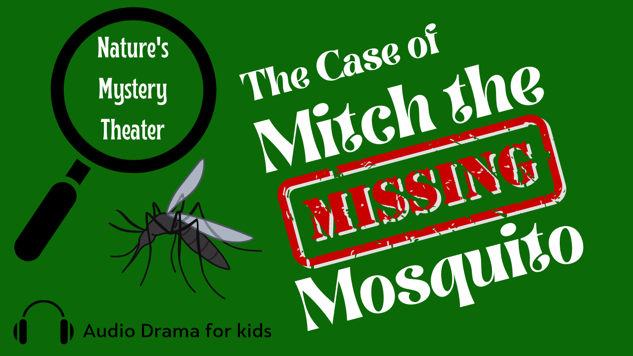 Nature's Mystery Theater: The Case of Mitch the Missing Mosquito