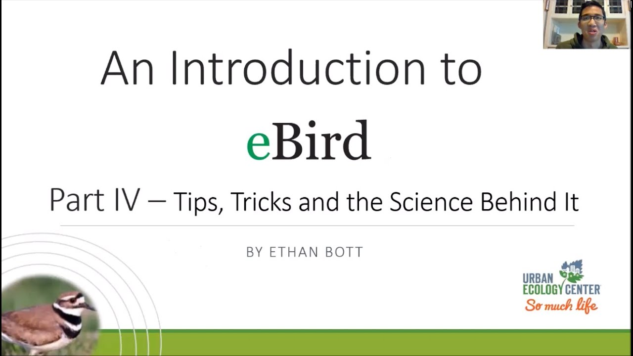 Intro to eBird – Part 4 – Final Tips and the Science Behind It (Recorded Live Lecture)