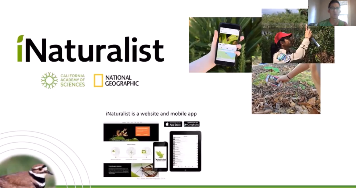 Introduction to iNaturalist