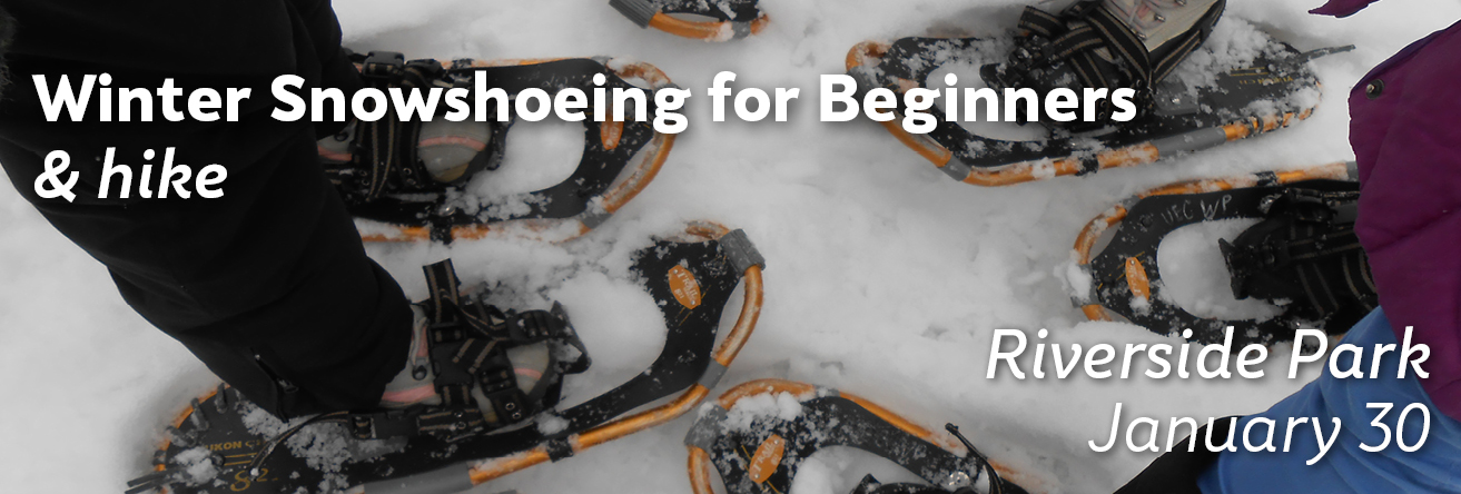Winter Snowshoeing