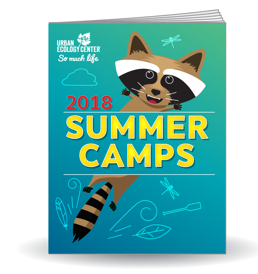 Link to Summer Camp 2018 Guide as a pdf