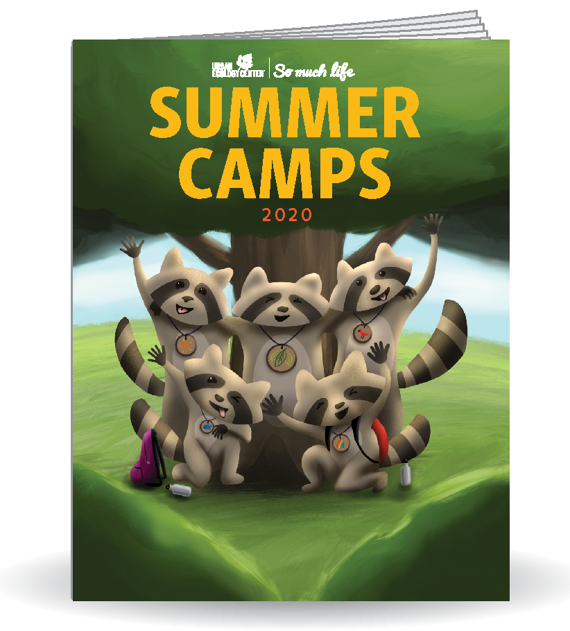 Link to pdf of Summer Camp 2020 booklet
