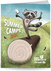 Link to pdf of Summer Camp 2021 booklet