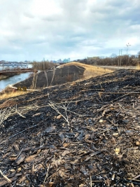Illegal Fire in Three Bridges Park this Week