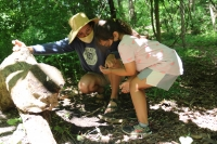 Summer Campers Reconnecting to Nature