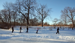 Cross country skiing in Washington Park!