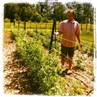 The Farmers Behind the Food: Will Moyer, Wellspring
